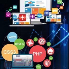Internetinių svetainių kūrimas Profesional planas