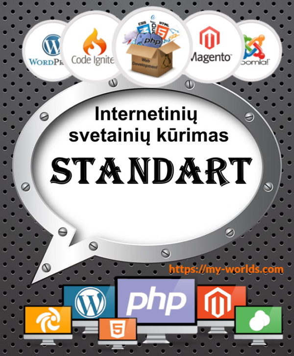 Interneto svetainės kūrimas Standart planas