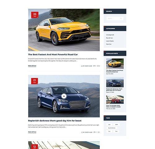 Automobilių nuomos interneto svetainės kūrimas 5
