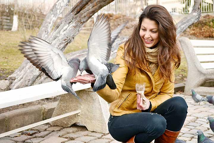 Kuriame interneto svetaines paukščių milėtojams