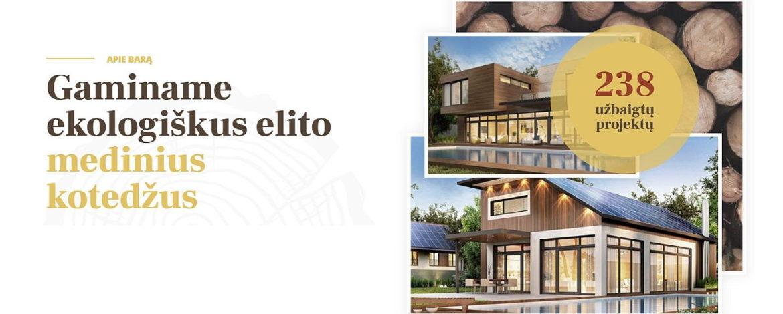 Medinių namų interneto svetainiu kūrimas slaid2